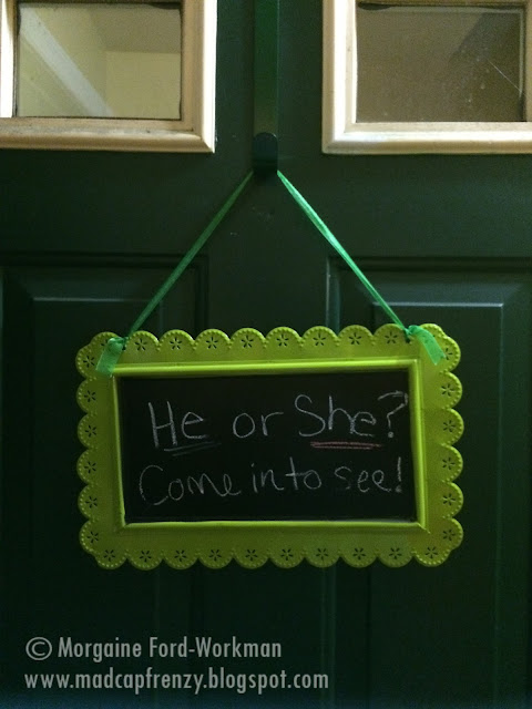 Gender Reveal Party on a Budget front door