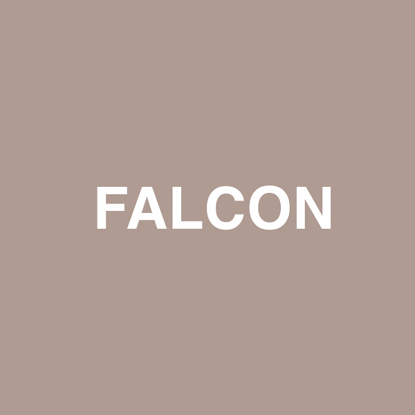 Jaden Smith - Falcon (feat. Raury) - Single Cover