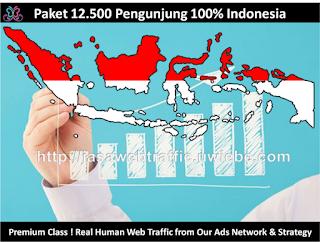 Paket 12.500 Visitor Indonesia