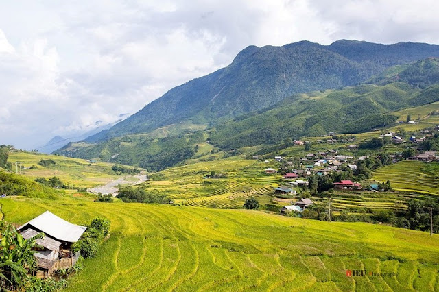 Autumn is the perfect time to visit Sapa 1