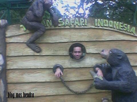 Berpose di Dalam Taman Safari - Blog Mas Hendra