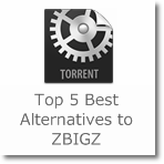 Top 5 Best Alternatives to ZBIGZ