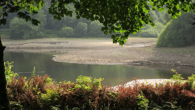 Ogden Water in West Yorkshire after weeks with no rain. Trees, plants and exposed ground which is usually under water.