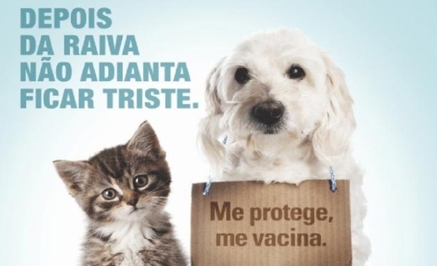 Vacinação antirrábica se inicia nesta segunda-feira (01/10) em São Pedro da Aldeia