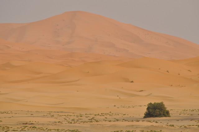 Como conhecer e dormir nas tendas no Deserto do Saara