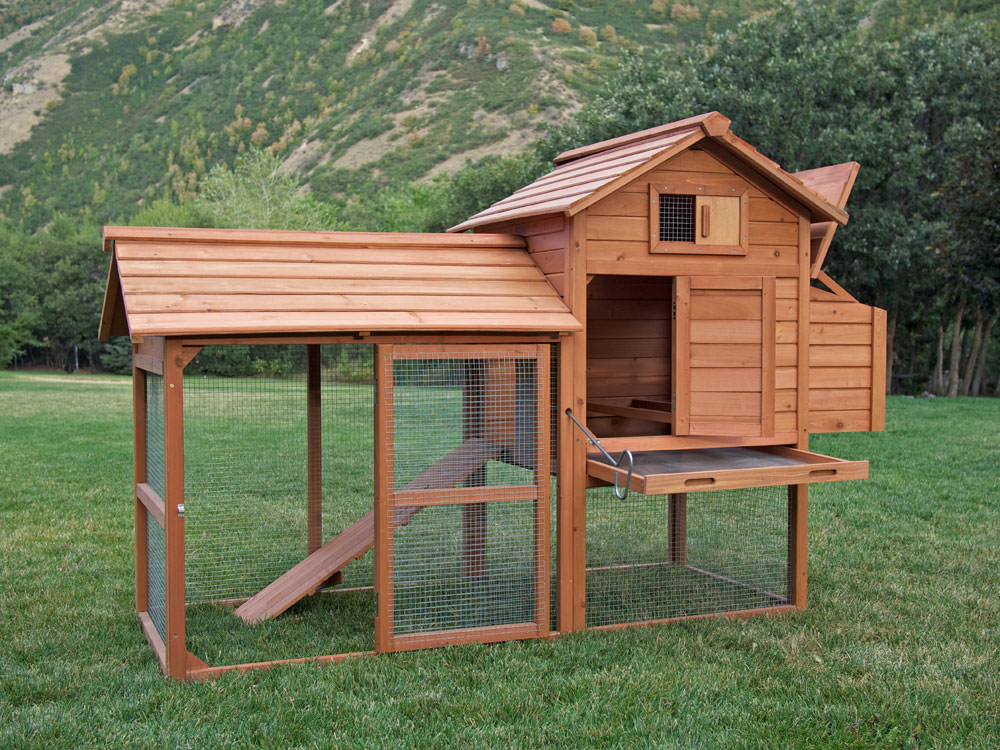 How To Build A Chicken Coop: How To Build A Chicken Coop ...