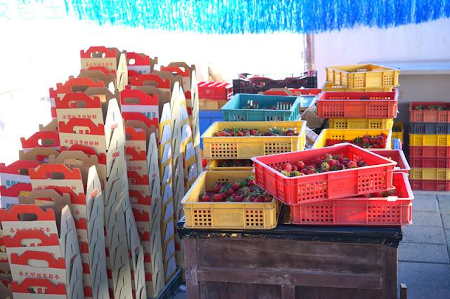 DSC00853 - 台中觀光果園│採草莓不用去大湖,台中草莓世界就在潭子慈濟醫院對面開採囉