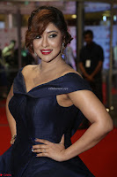 Payal Ghosh aka Harika in Dark Blue Deep Neck Sleeveless Gown at 64th Jio Filmfare Awards South 2017 ~  Exclusive 141.JPG