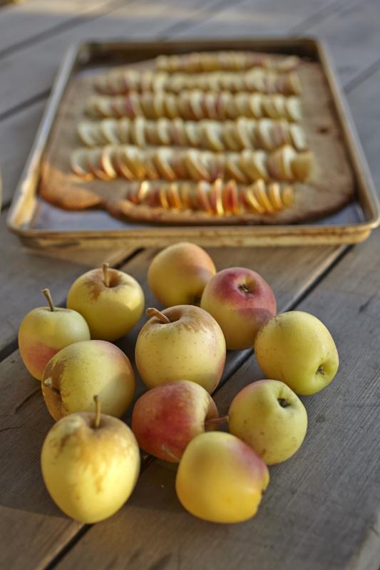 gluten free crostata galette apple tart
