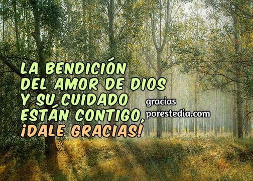 Bonitas frases de acción de gracias a Dios, feliz día, reflexión de acción de gracias, buen día, imágenes de gracias a Dios por Mery Bracho.