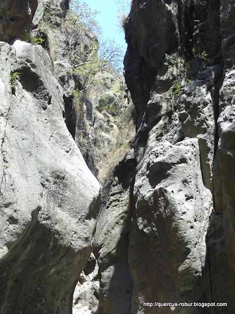 Paredes del cañón Azul Turquesa