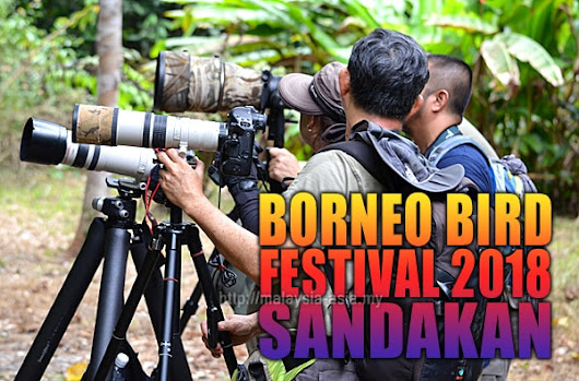 10th Borneo Bird Festival 2018 - What Can You Expect