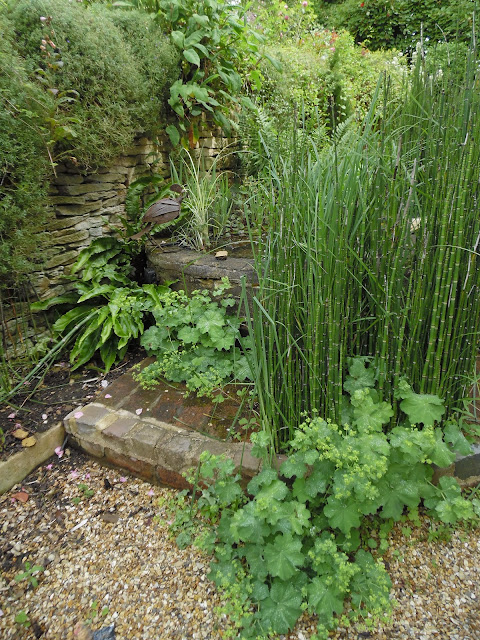 angielski ogród