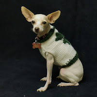 Shamrock dog sweater for St. Patrick's Day