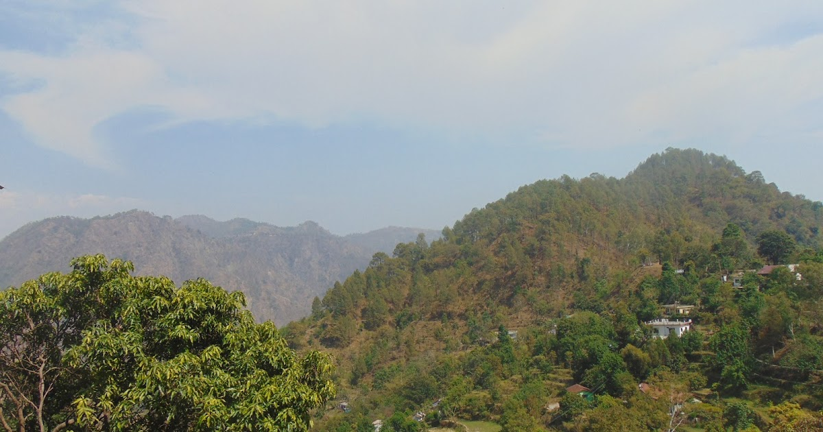 A Few Pictures From My Journey to Binsar From Nainital