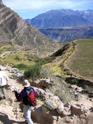 Foto al  Valle de Majes - Arequipa de día