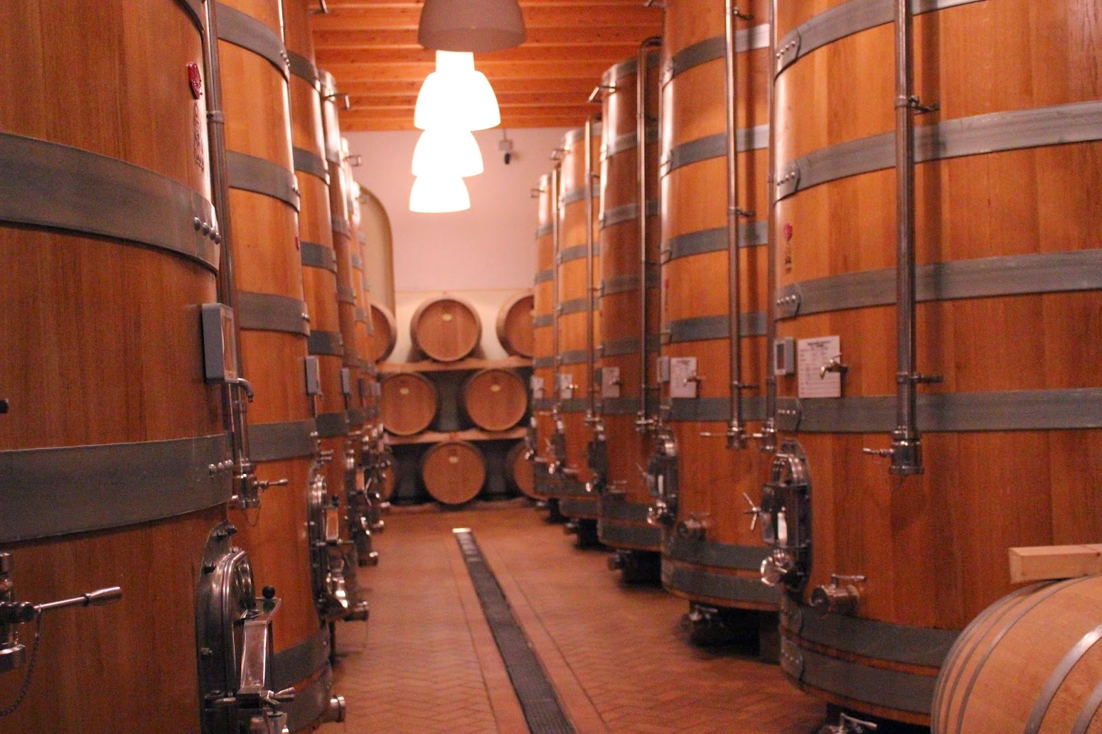 Wine cellar of Monte Zovo