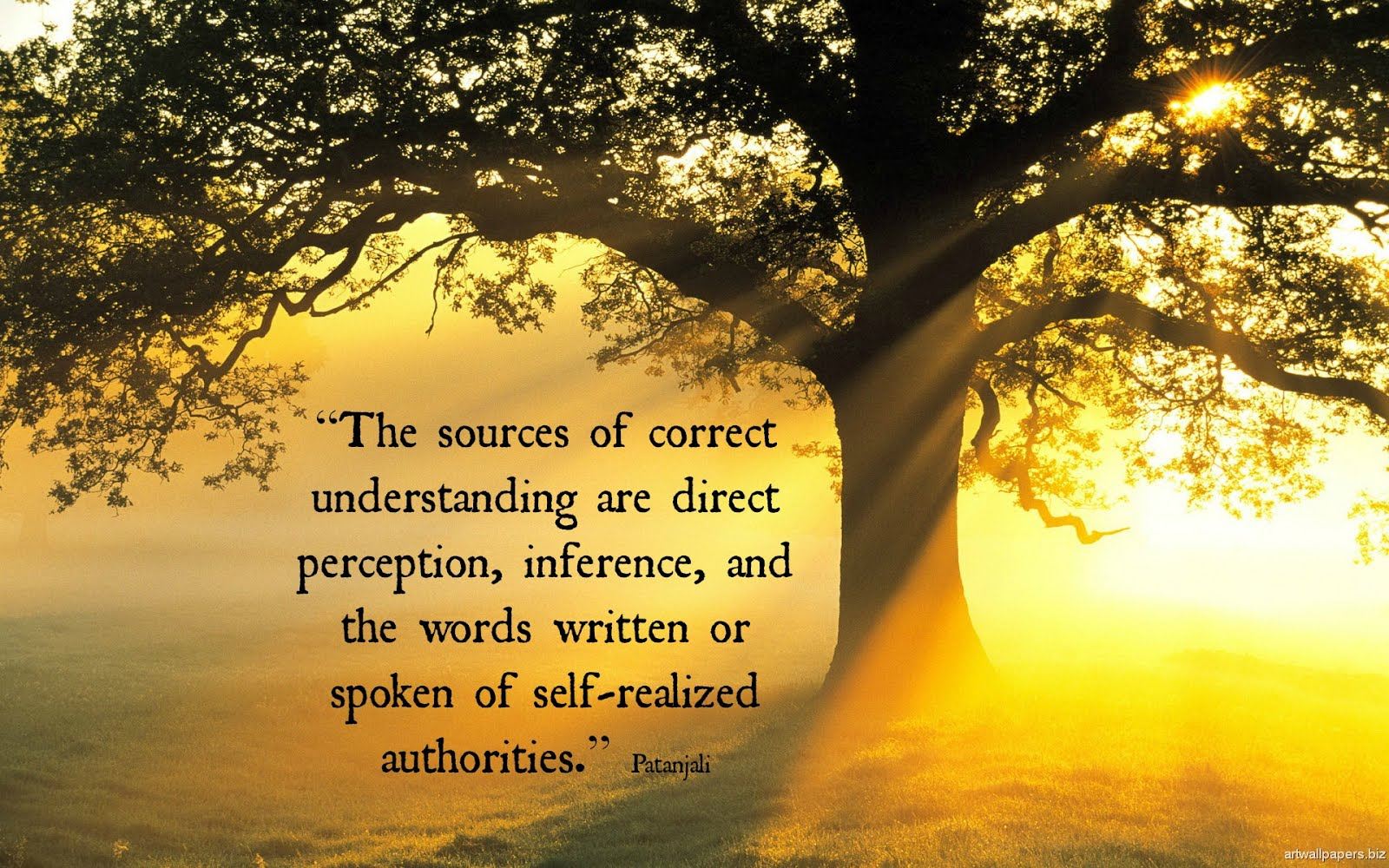 The Sources of Correct Understanding