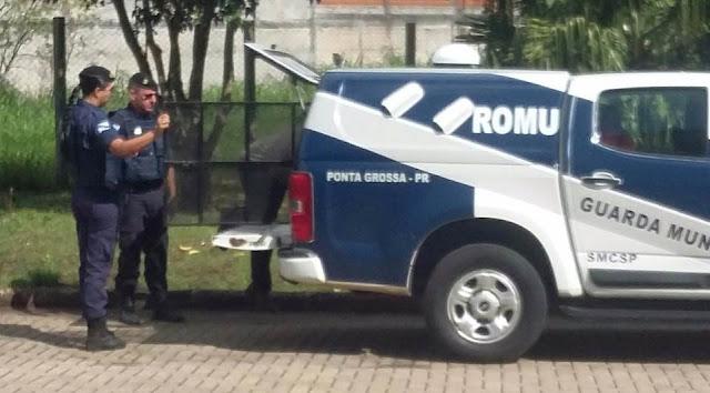 Elemento é detido pela Guarda Municipal de Ponta Grossa (PR) acusado de 'apalpar' uma menor