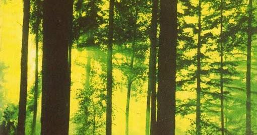 _ O _ P _ I _ U _ M __ H _ U _ M _: Thy Serpent - Forests of