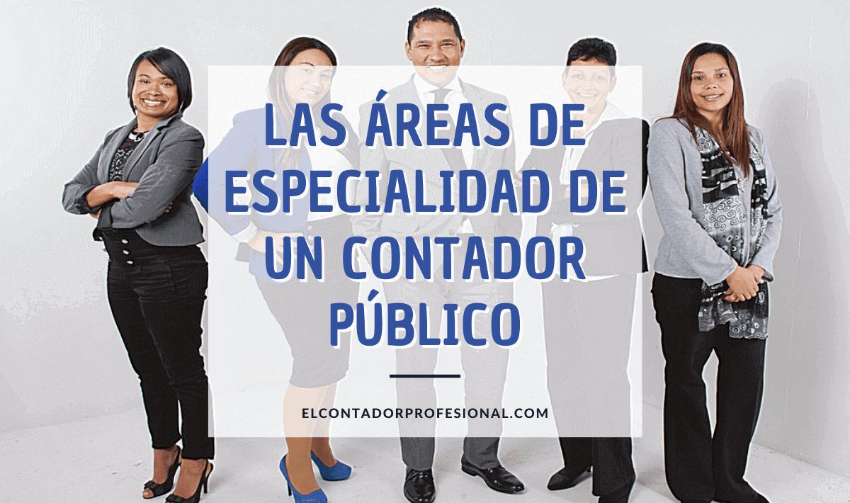 Áreas de especialización de un contador público