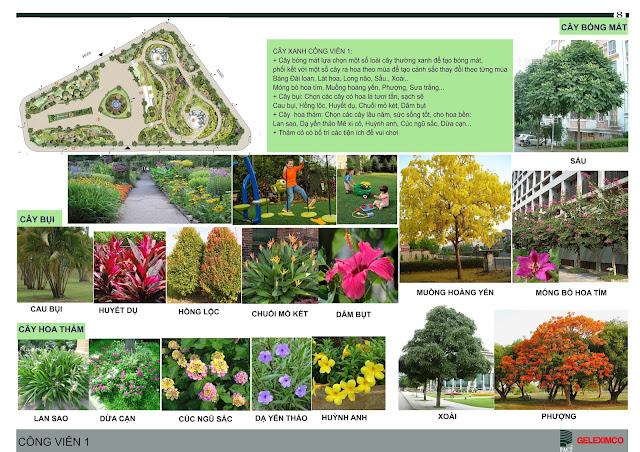 Thiết kế công viên 1 với các loại cây, hoa được trồng