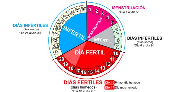 ruleta de la menstruacion