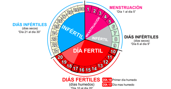 Calendario Fertil.Calendario Fertil E Infertil De La Mujer Calendarios Hd