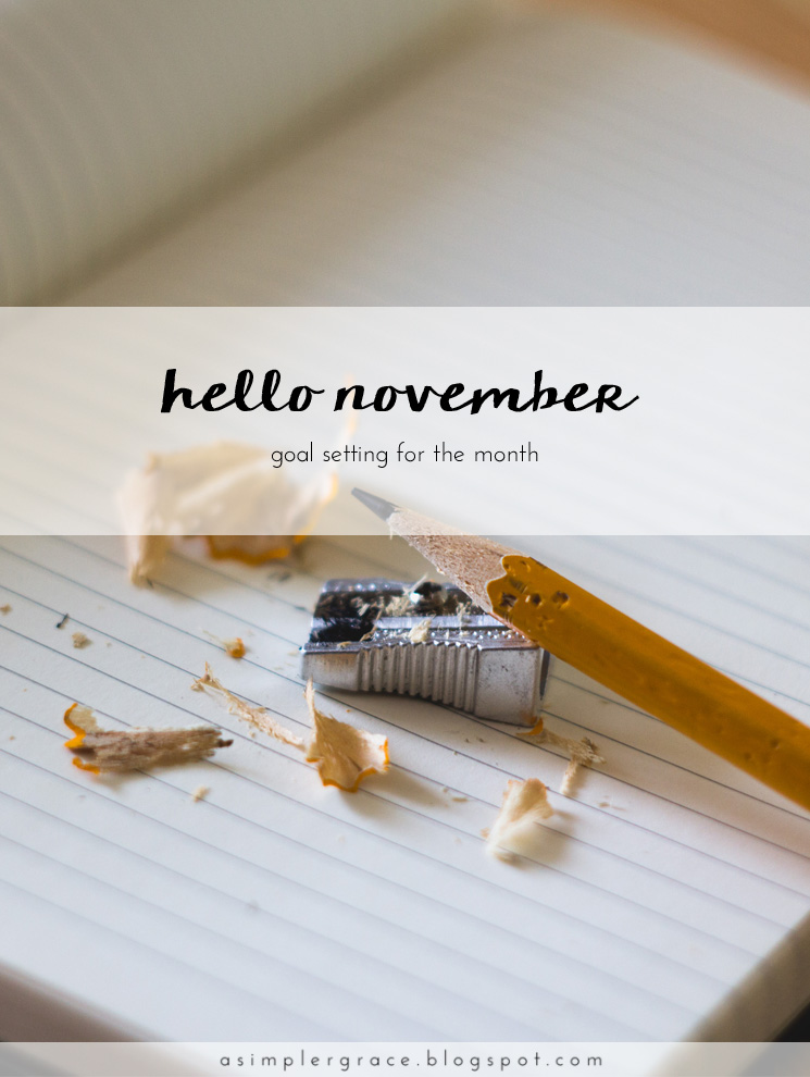 Tracking the goals I've set both in my personal and blogging life for November. #goals