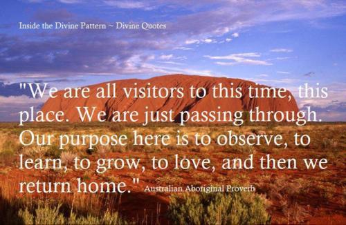 Weisheiten australische Der Lama