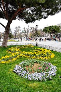 Tulips and Kaiser Wilhelm Fountain