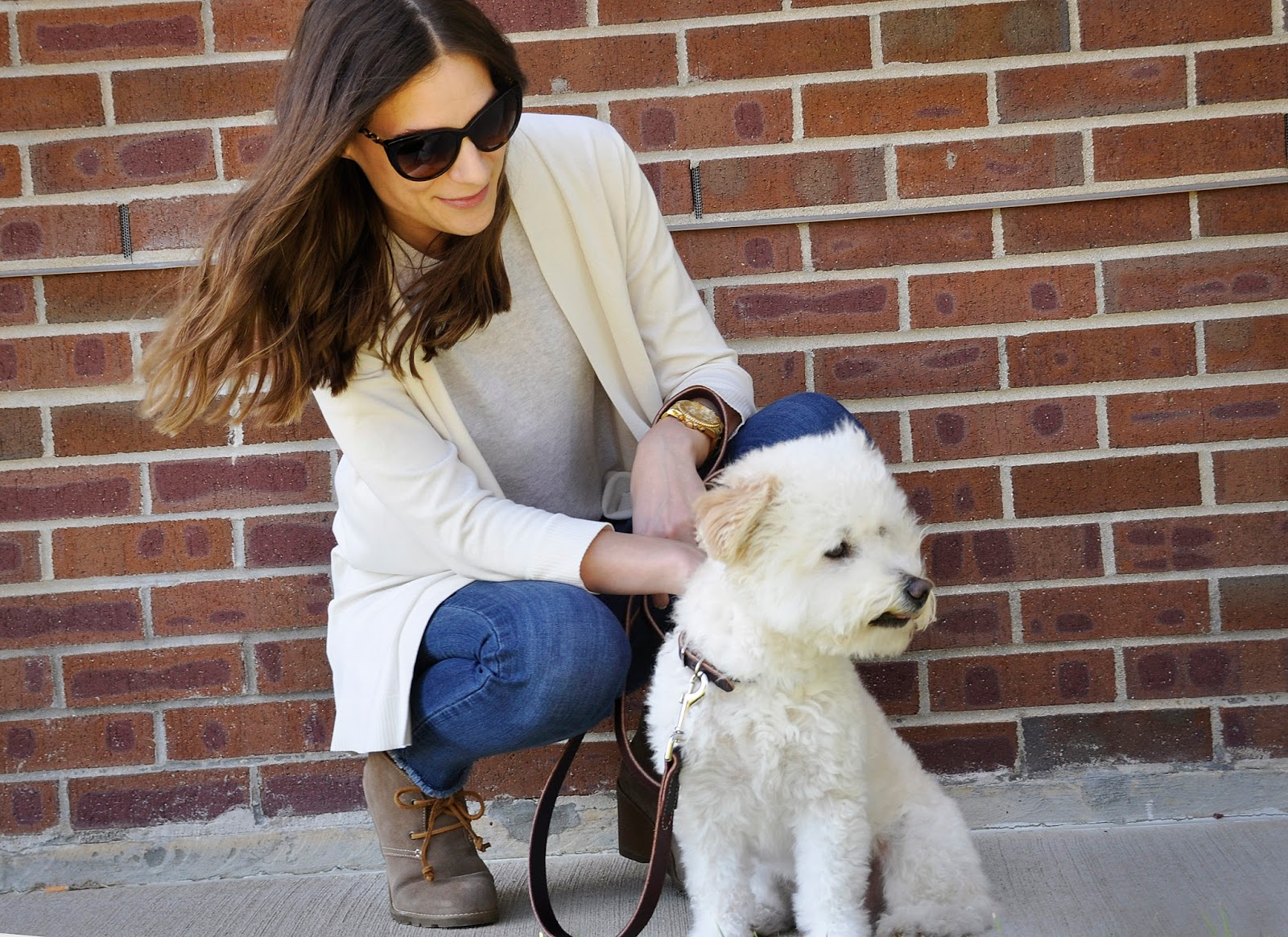 Sperry wedge ankle booties and a Bichon Frise