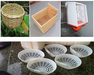 Burung Cendet - Tempat Pakan dan Minum Burung Cendet dan Kotak Sarang Untuk Burung Cendet - Penangkaran Burung Cendet