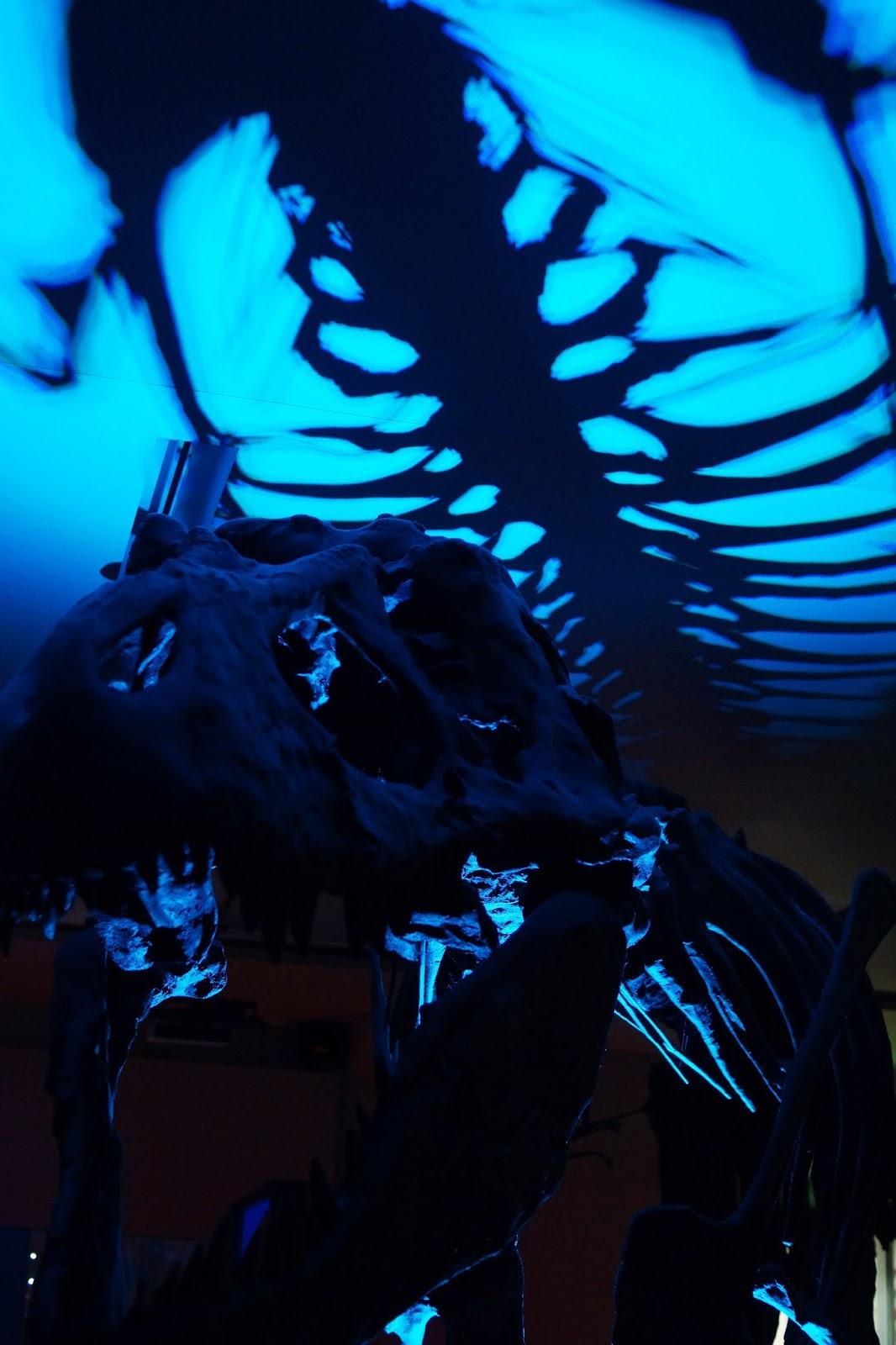 Great North Sleepover Hancock Museum T-Rex Nebloggers Review Lifestyle