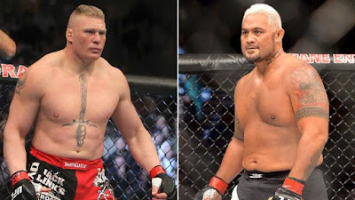 Brock Lesnar Mark Hunt WWE UFC wrestling MMA
