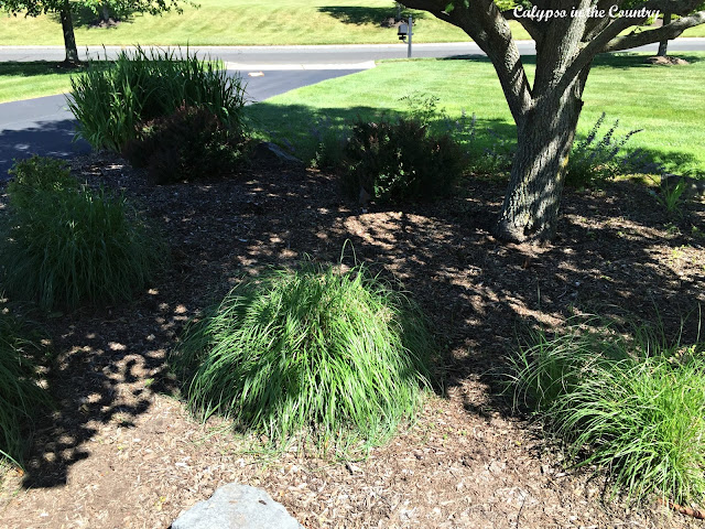 Landscaping beds