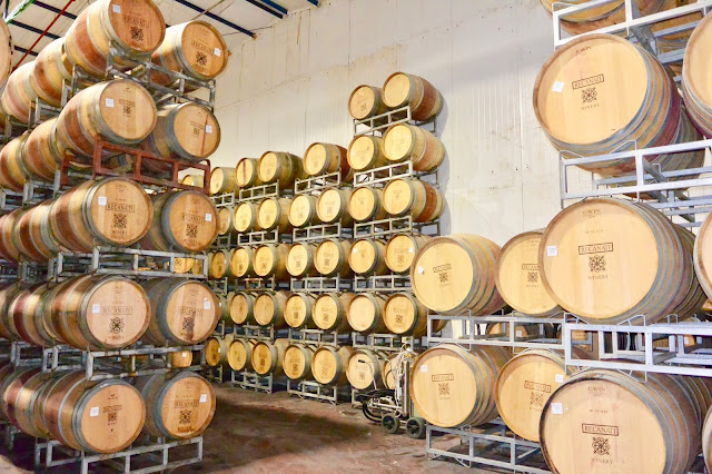 Recanati Winery - Barrels. Photo by Nicole Ruiz Hudson