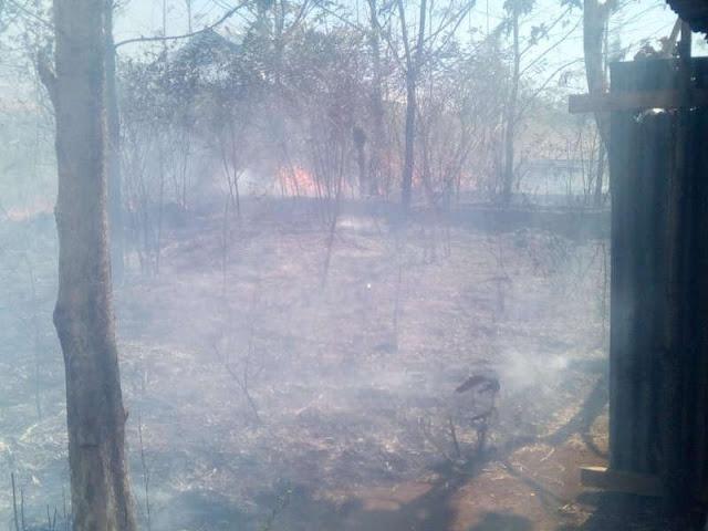 Damkar MTB Berhasil Padamkan Kebakaran Lahan di Sifnana