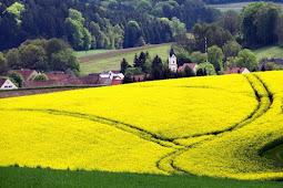 Kiat Menciptakan Peluang Usaha Yang Menjanjikan Di Wilayah Pedesaan