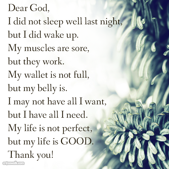 My Life Is Not Good Quotes: Dear God, I Did Not Sleep Well Last Night, But I Did Wake