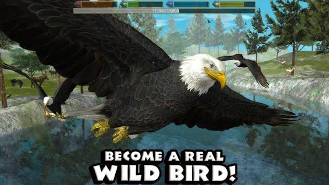 Game simulasi burung terbaik untuk android.
