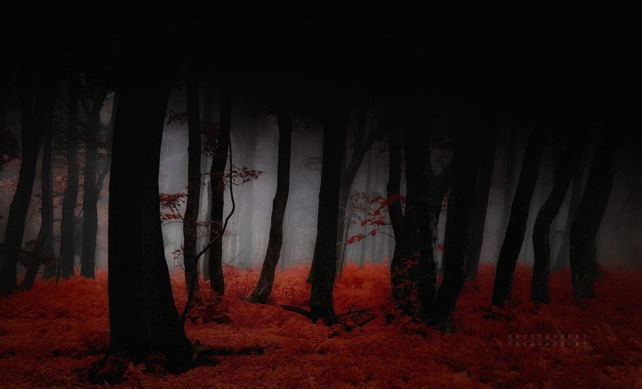 Dark Fall Wallpaper Something Wicked This Way Comes Dark Fall