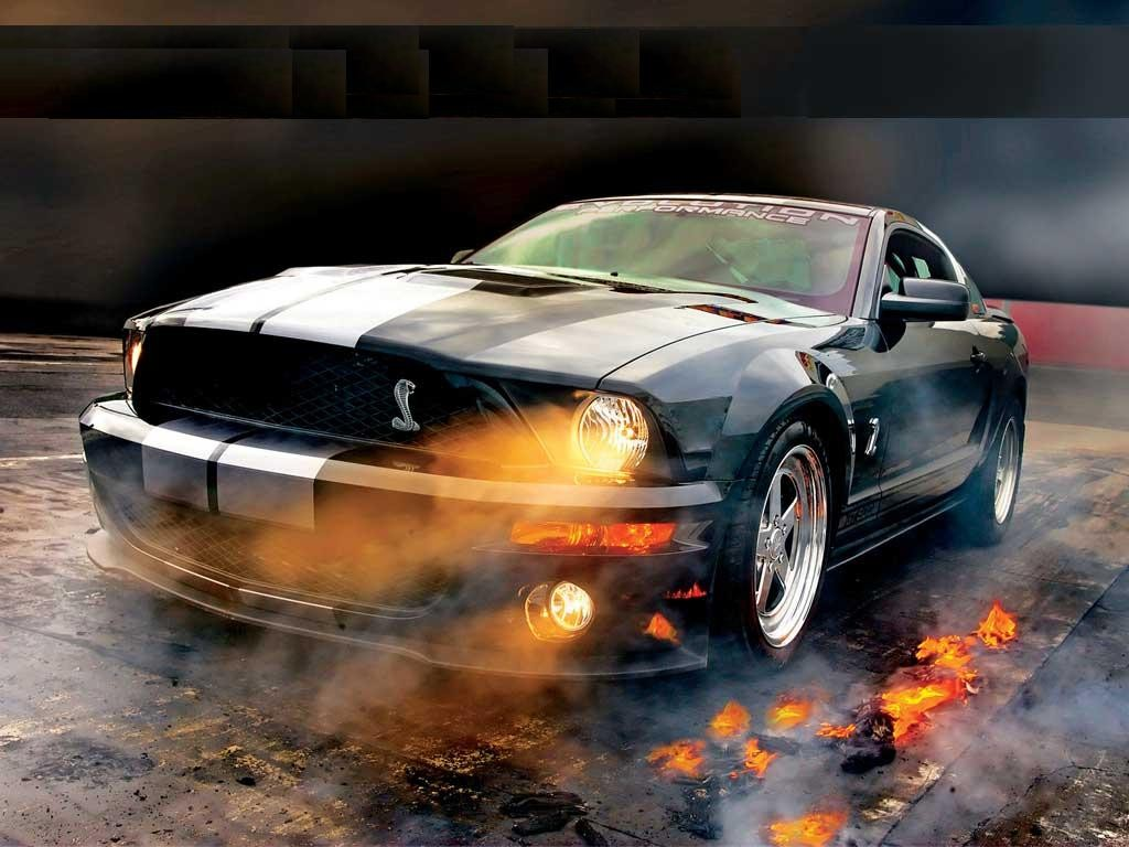 AUTO CARS PROJECT: All Mustang Cobra Cars Project ...