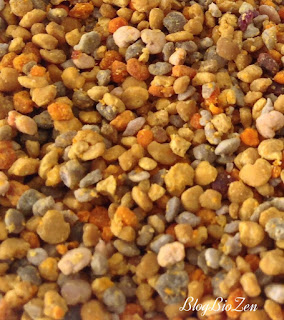 Ma cure de pollen frais de châtaignier ronce bio - Aristée