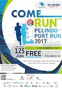 Pelindo Port Run • 2017