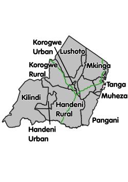 Matokeo ya darasa la saba 2019 Tanga - PSLE Results 2019 for Tanga Region