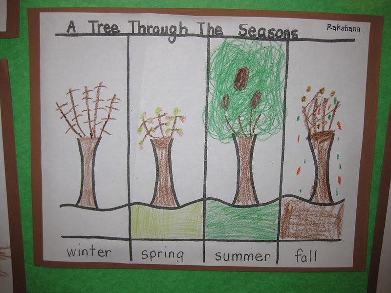 trees miss kindergarten. Black Bedroom Furniture Sets. Home Design Ideas