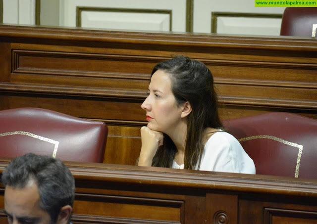 Hernández Labrador pide más medios para la atención a la diversidad en La Ley Canaria de Educación