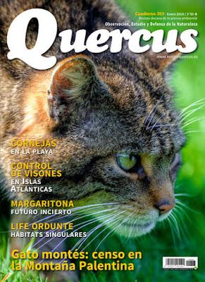 Revista Quercus núm. 383 - Enero 2018