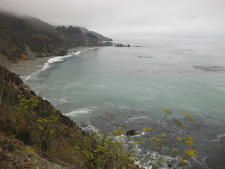 Foggy view of the coast with yellow flowers, Pacific Coast Highway, California